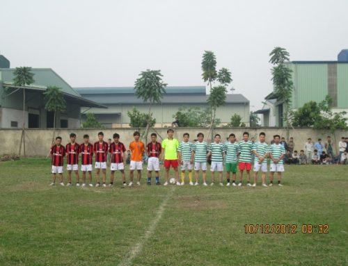 Giải thể dục thể thao năm 2012