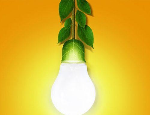 【第6回】ベトナムのバイオマス燃料ビジネスに好機到来:バイオマス発電の可能性【図解で分かるベトナムビジネス】