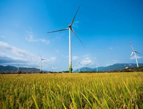 Danh mục các dự án điện gió bổ sung vào Quy hoạch điện VII (điều chỉnh)