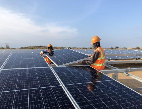 ニントゥアン省:フオックニン太陽光発電所が竣工